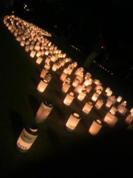 大阪城 城灯りの景3