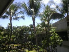 ハワイアン航空4