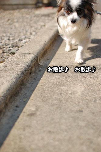 1DSC_1679.jpg
