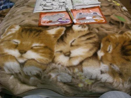 10ちなみに猫