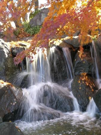 4一応滝です