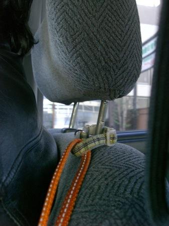 5おうじろうのシートベルト