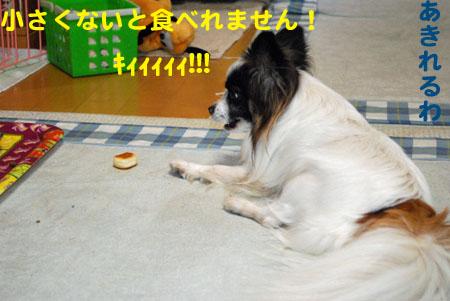 10きぃぃぃぃ
