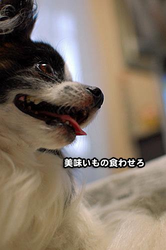 ご飯事情03