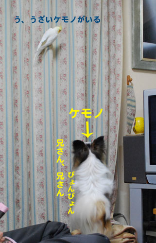 2DSC_1296.jpg