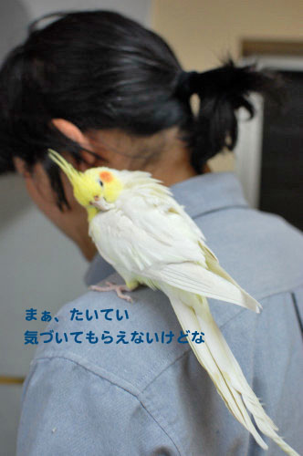 4DSC_0762_01.jpg