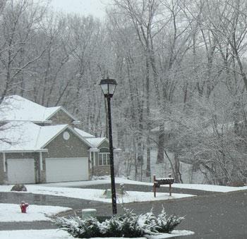 snow040109.jpg