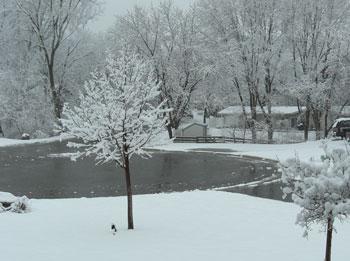 snow040509.jpg