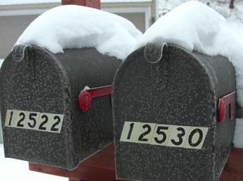 snow121008.jpg