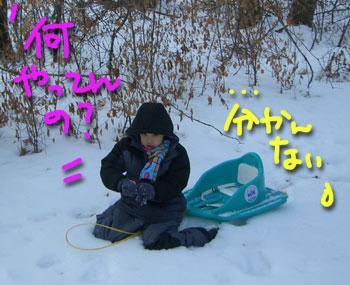 snowplay10.jpg