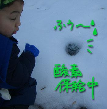 snowplay5.jpg