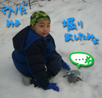 snowplay8.jpg