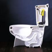 toiletanatomy.jpg