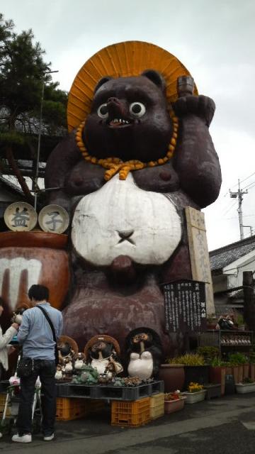 2008050313070000-jumb-tanuki1.jpg