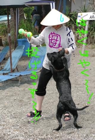Img_0157-ichiro3-614.jpg