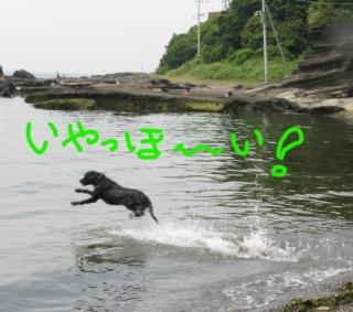 Img_0164-ichiro8-614.jpg