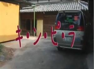 kinpira01.jpg