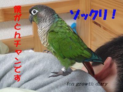 12_7.jpg