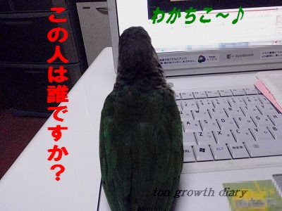 11_21 (1)