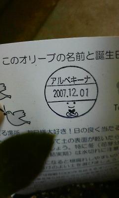 200811270843001.jpg