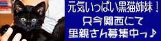 ha_huchan_bana0618.jpg