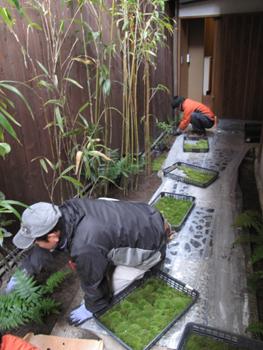 kyokoyado_201201273.jpg