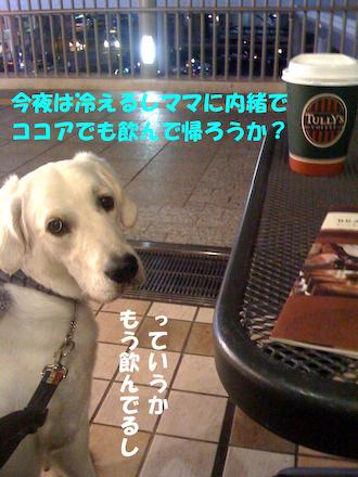 02_20081227232438.jpg