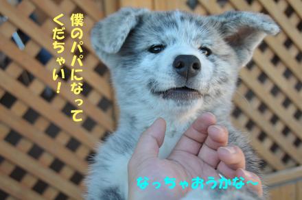 DSC_4444.jpg