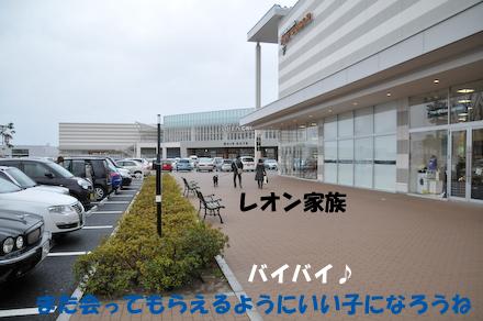 DSC_5013.jpg
