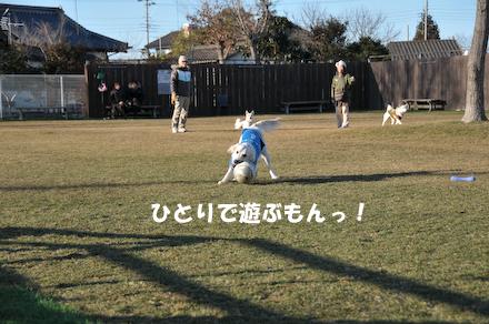 DSC_5045.jpg