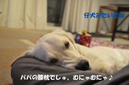 DSC_5284.jpg