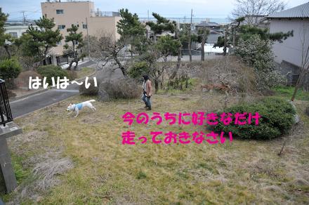 DSC_5523.jpg