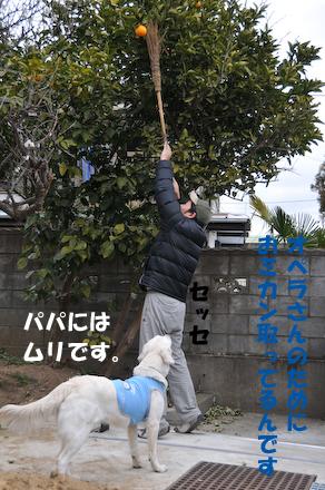 DSC_5539.jpg