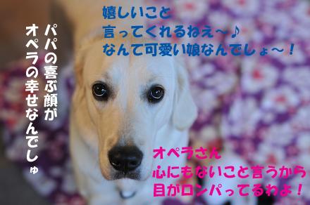 DSC_5588.jpg