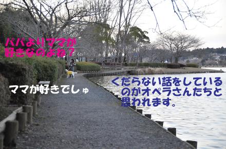DSC_5616.jpg