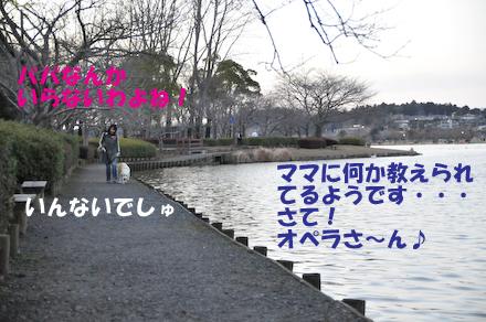 DSC_5617.jpg