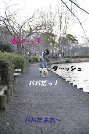 DSC_5618.jpg