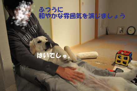 DSC_5676.jpg