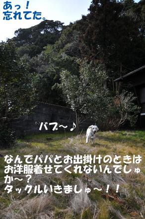 DSC_5874.jpg