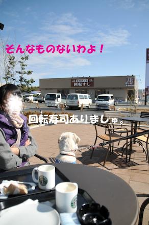 DSC_6049.jpg