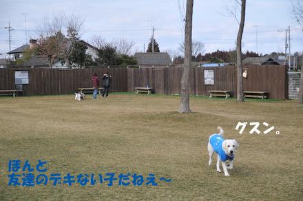 DSC_6161.jpg