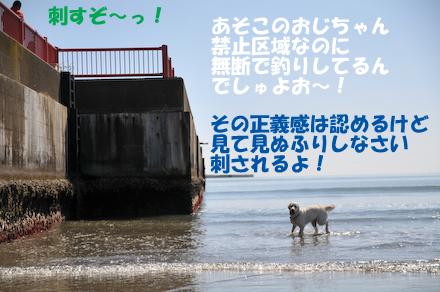 DSC_6798.jpg