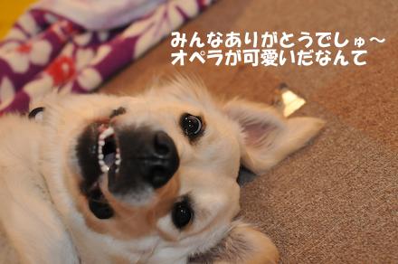DSC_6902.jpg