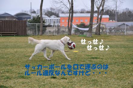 DSC_7189.jpg