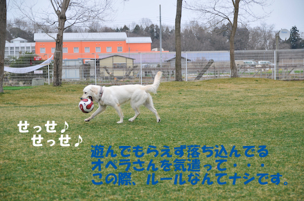 DSC_7193.jpg
