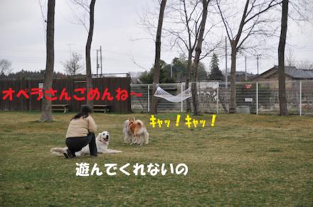 DSC_7199.jpg