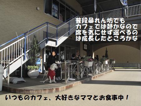 IMG_0261.jpg