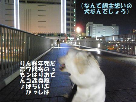 _0010818.jpg
