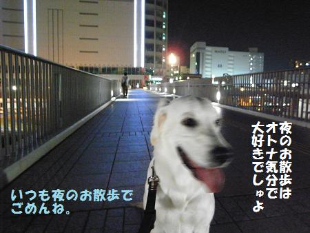 _0010819.jpg