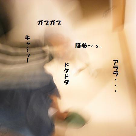 _0010849.jpg